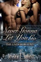 Never Gonna Let You Go by Jessica E. Subject